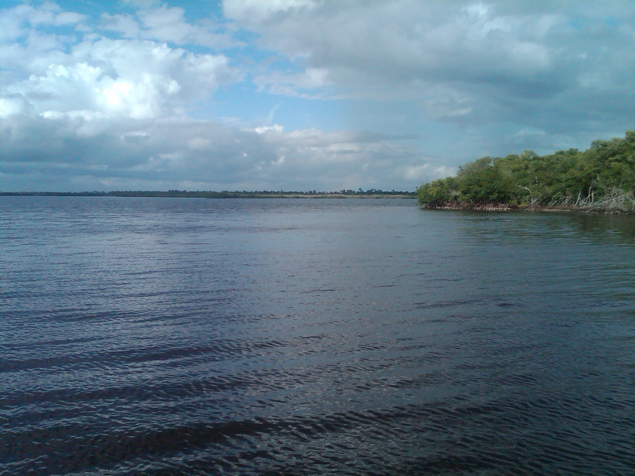charlotte harbor chat Search charlotte harbor real estate property listings to find homes for sale in charlotte harbor, fl browse houses for sale in charlotte harbor today.