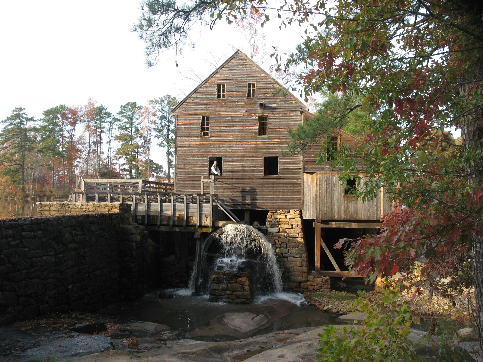 Some photos of Yates Mill Pond Raleigh Franklin activities