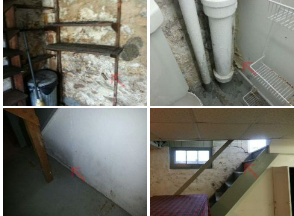 would you buy a home with a damp basement agreement price