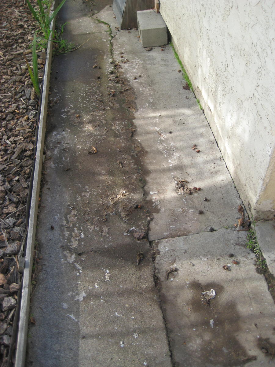 Water Plumbing Problems Apt2 Jpg