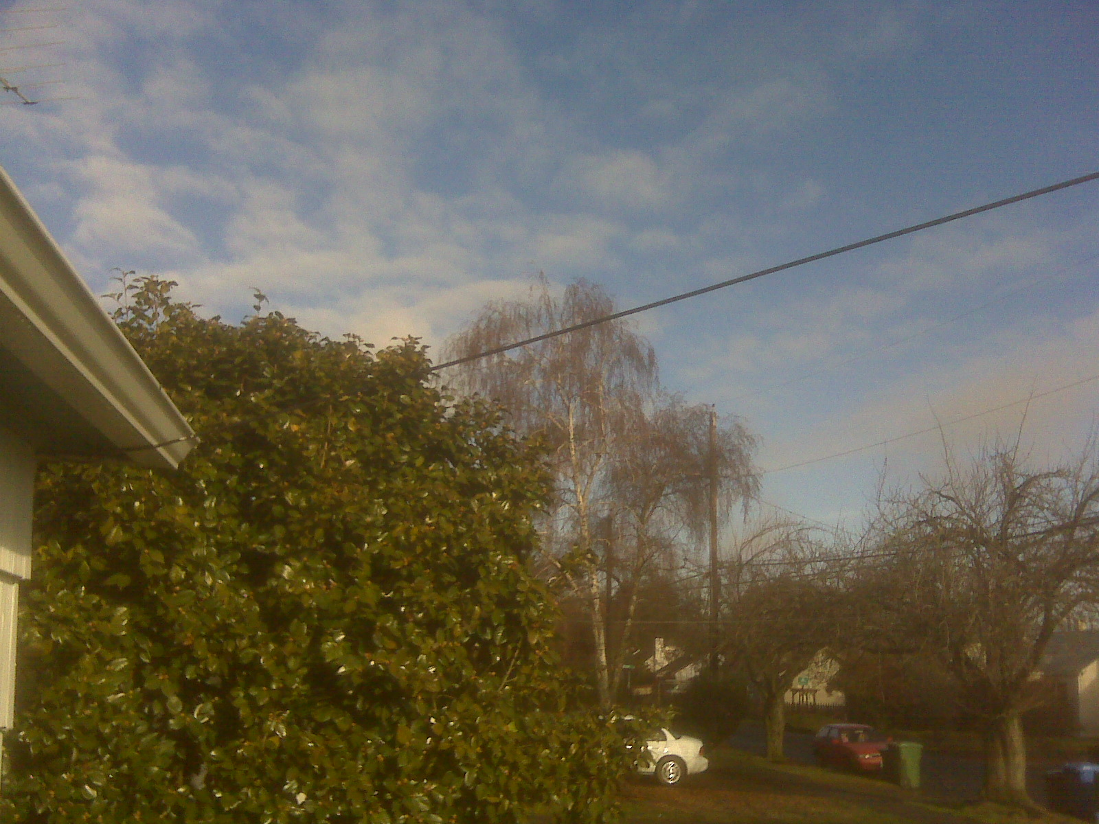 Today's Oregon Weather... (Eugene, Salem, Corvallis: hotel ...