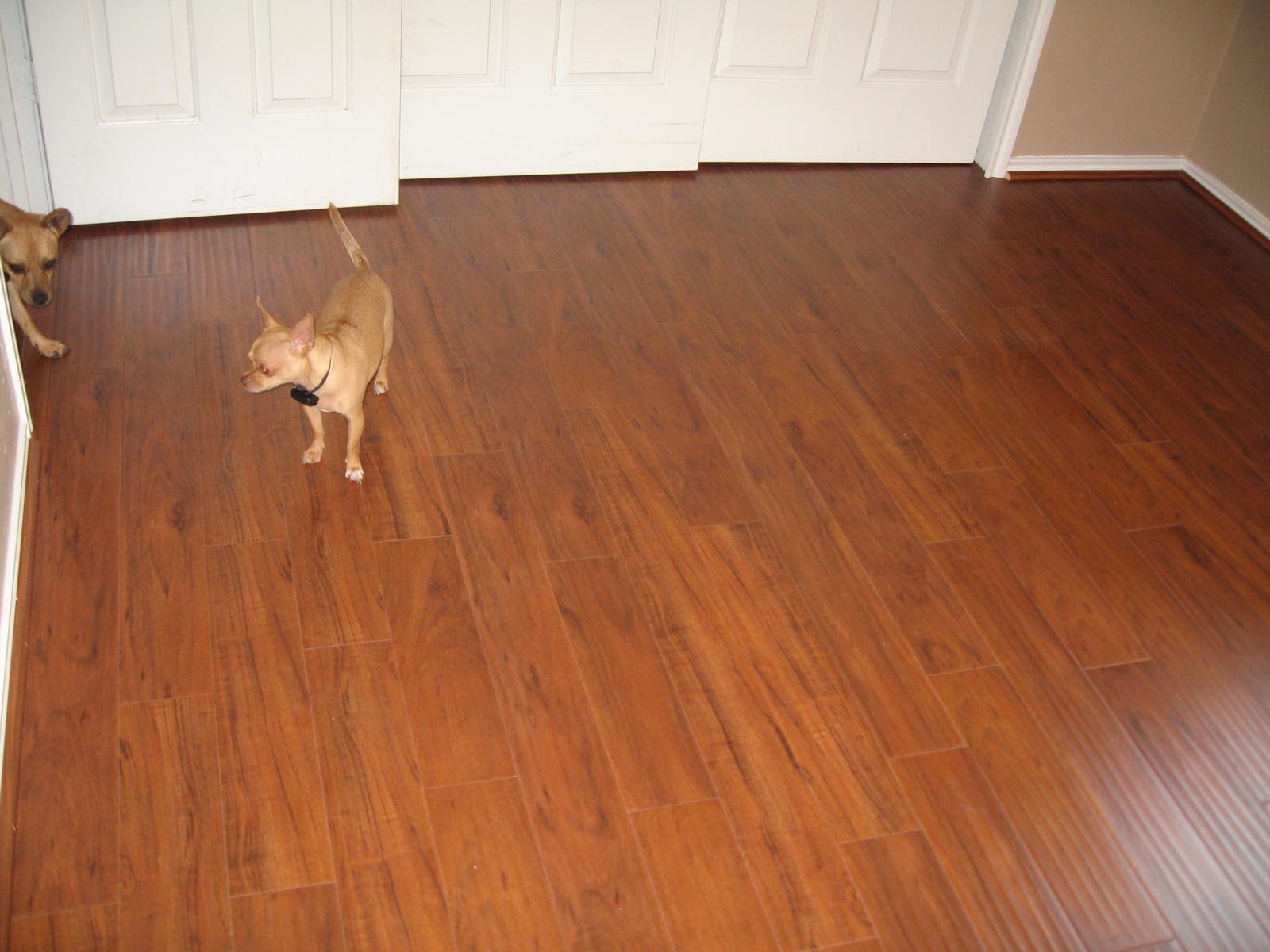 Laminate flooring best layout laminate flooring for Hardwood installation