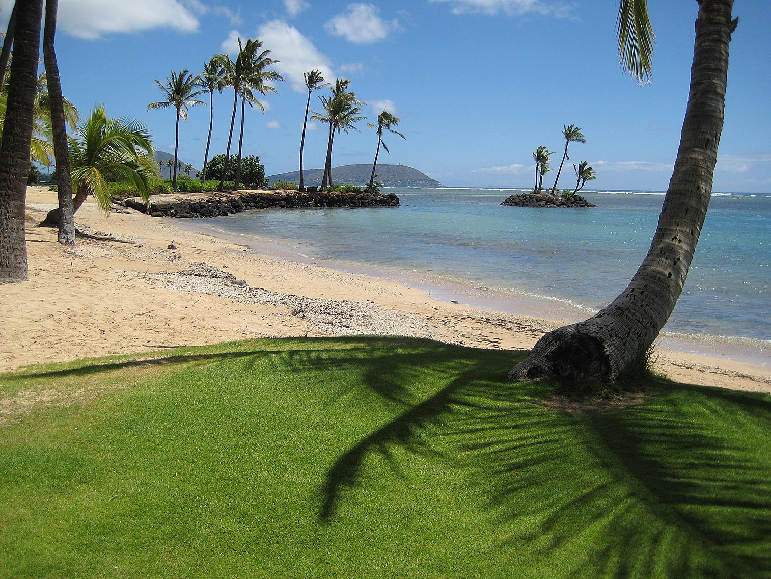 beach rentals