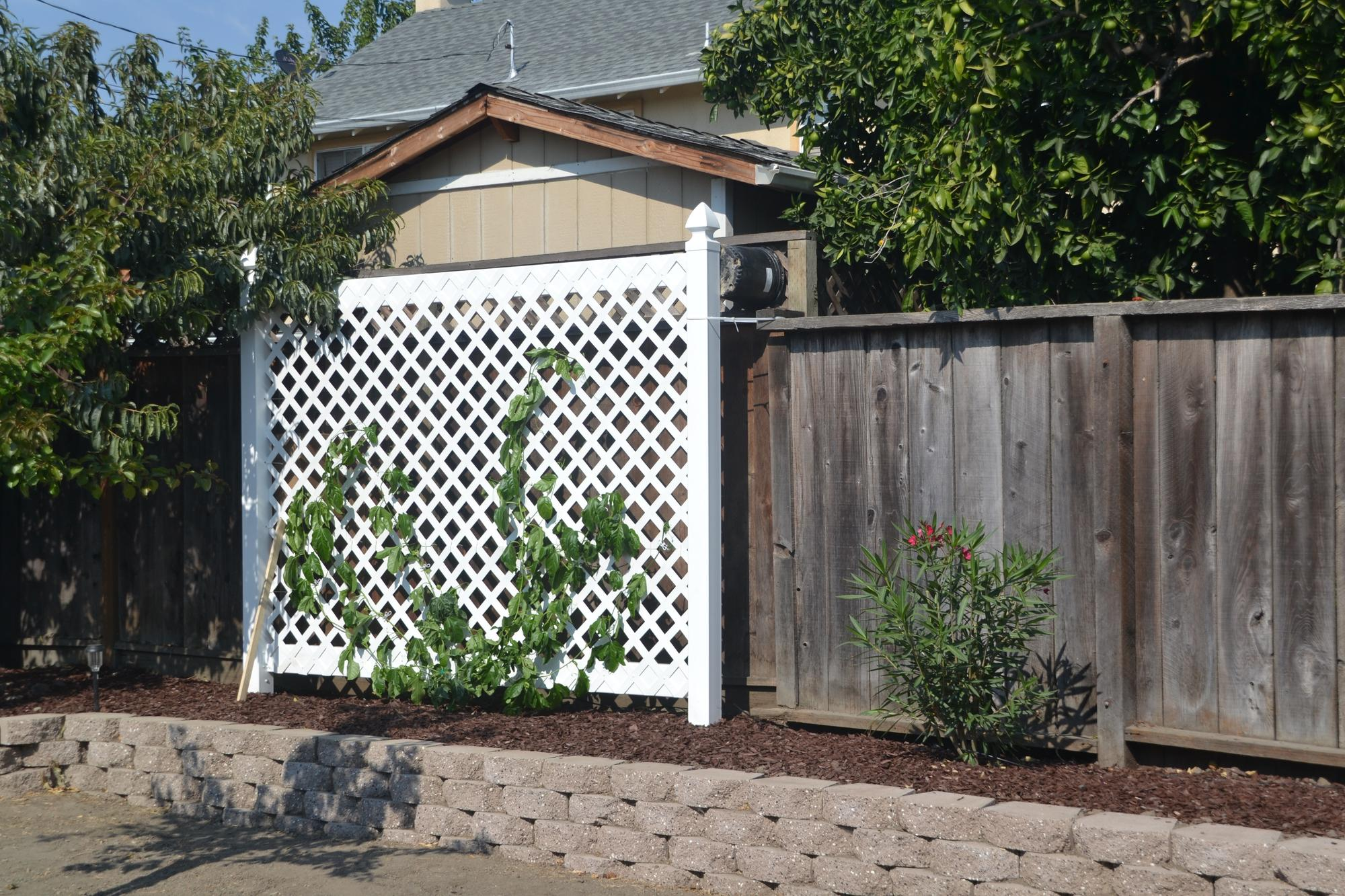 or make a very large trellis Garden Trees Grass Lawn