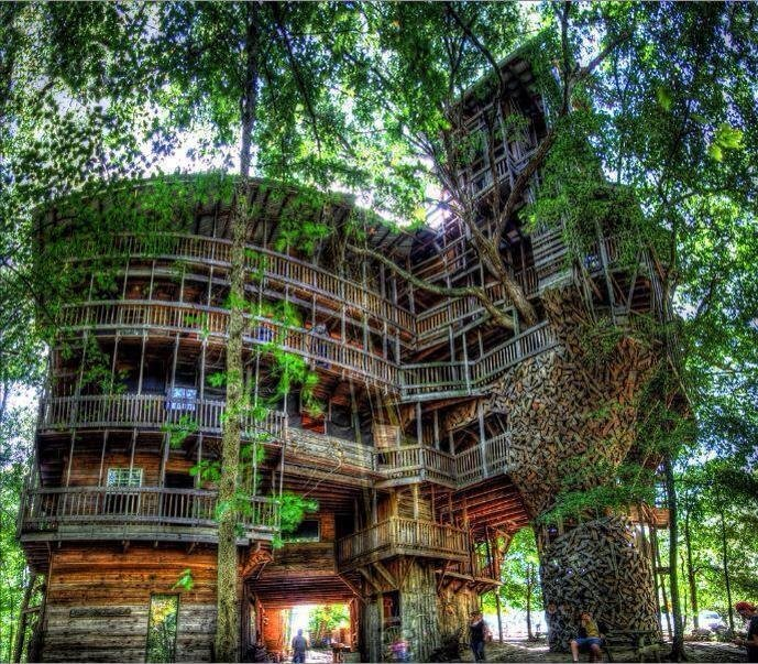 plain cool kids tree house houses photo in inspiration - Cool Kids Tree House