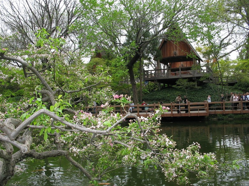 Around Town Ft Worth Gardens Japanese Ghost Fort Worth Texas Tx City Data Forum