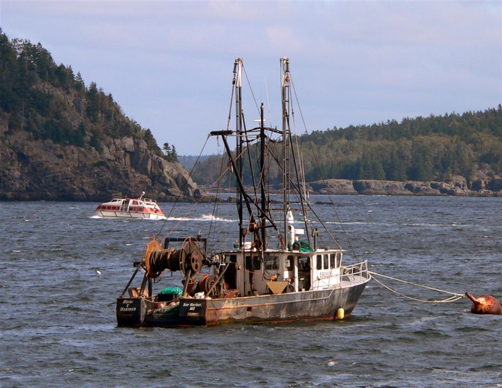 Pin old fishing boat on pinterest for Old fishing boat