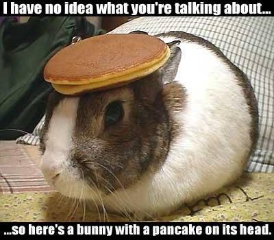 Flooder, une raison de vivre! - Page 25 Jill61-603505-albums-board-images-pic44882-bunny-pancake