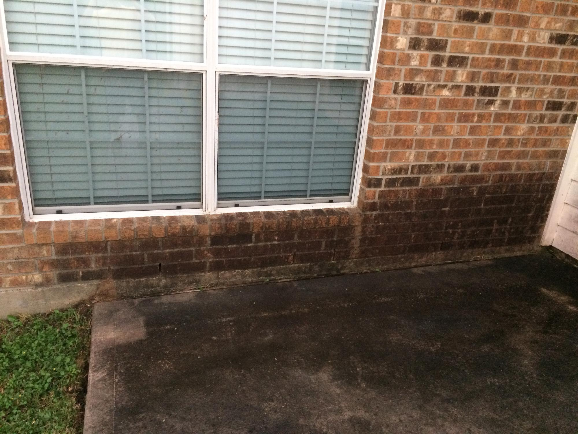 Exterior home cleaning(brick and siding) for back of house (washer