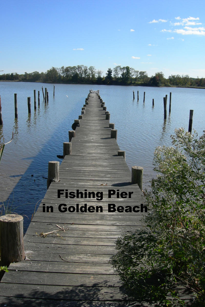 Marielally 39 s album golden beach maryland community for Maryland fishing piers