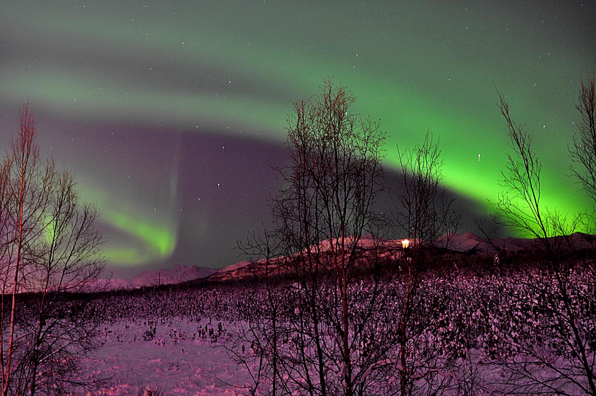 Northern Lights in Palmer? (Anchorage, Wasilla: 2013