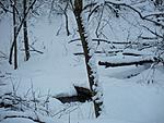 Winter Pics 2013