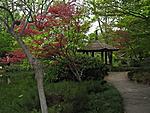 Web 121 Japanese Garden