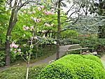 Web 107 Japanese Garden