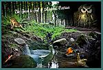 Forest Magickal Creatures