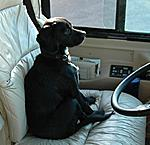 Waitin' for Dad in the Driver's seat.