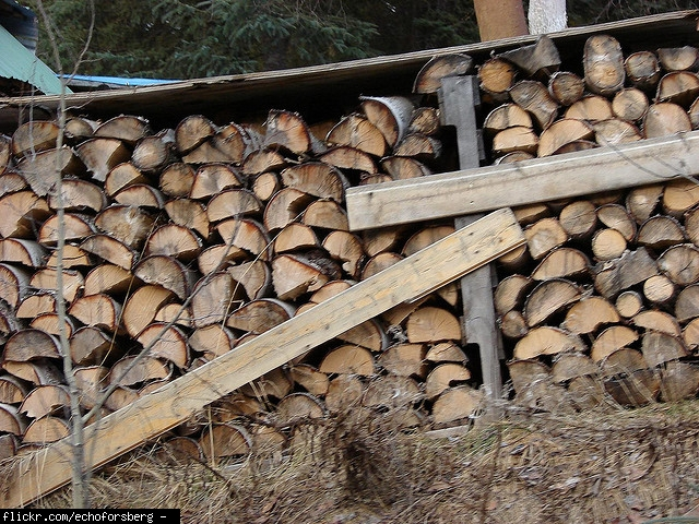 How Much Is A Cord Of Wood ~ Cord of wood average price lancaster penn purchasing