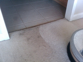 Bonnet Carpet Cleaning During
