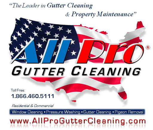 Gutter cleaning business plan EXAMPLES-SECURITY.GA