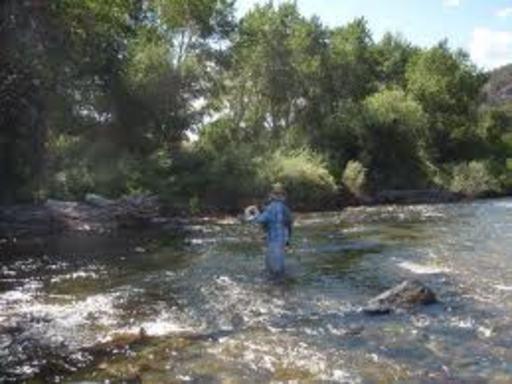 Salida colorado salida colorado homes and land business for Arkansas river colorado fishing