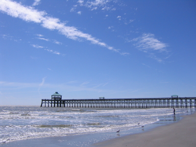 Folly Beach South Carolina A And City On An