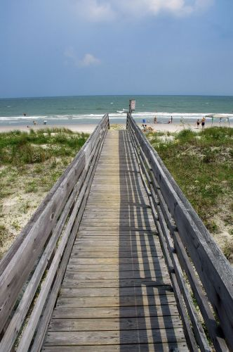 Myrtle Beach State Park South Carolina By The