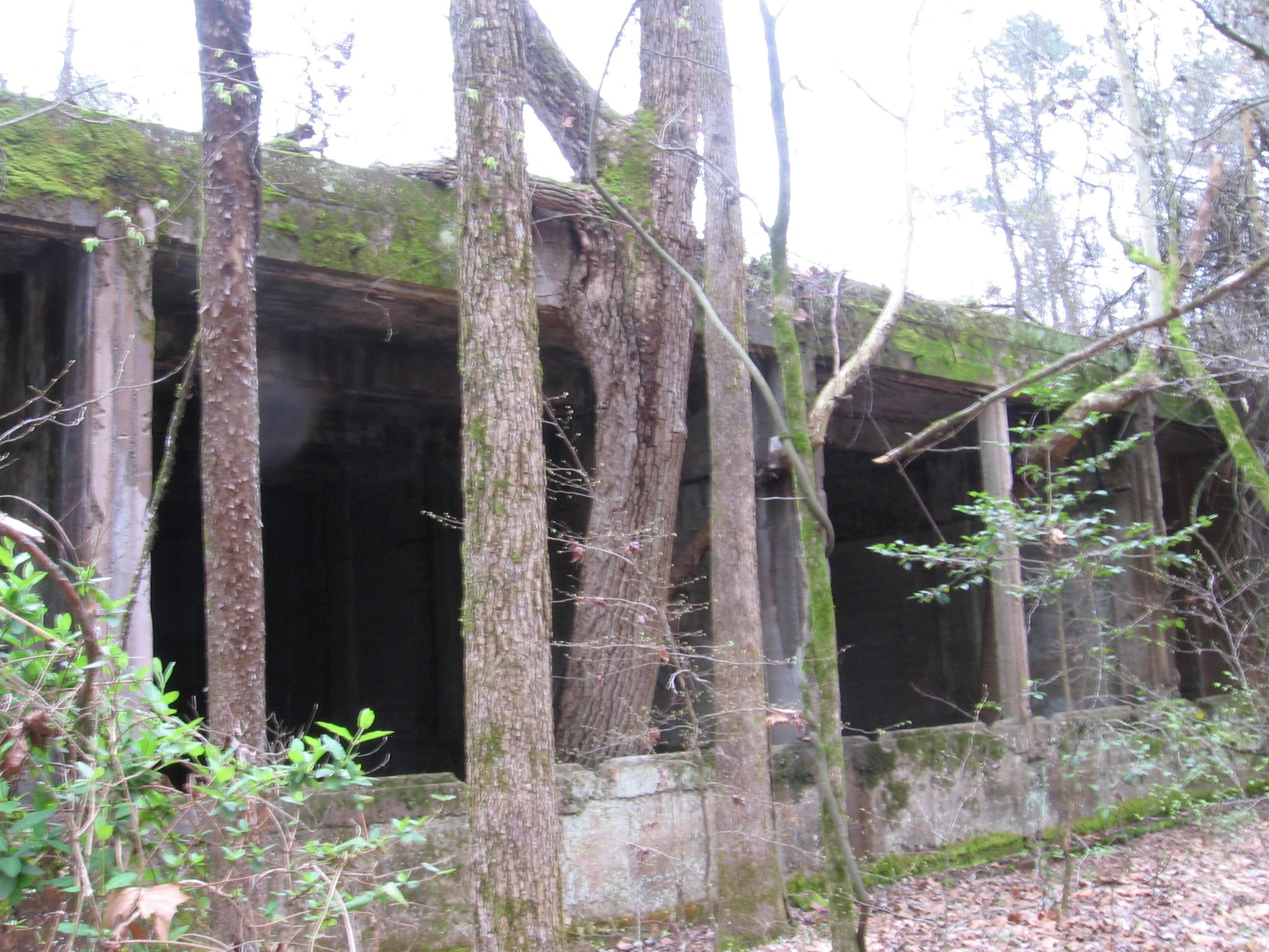 Exploring Arkansas Hot Springs Arkadelphia Hope