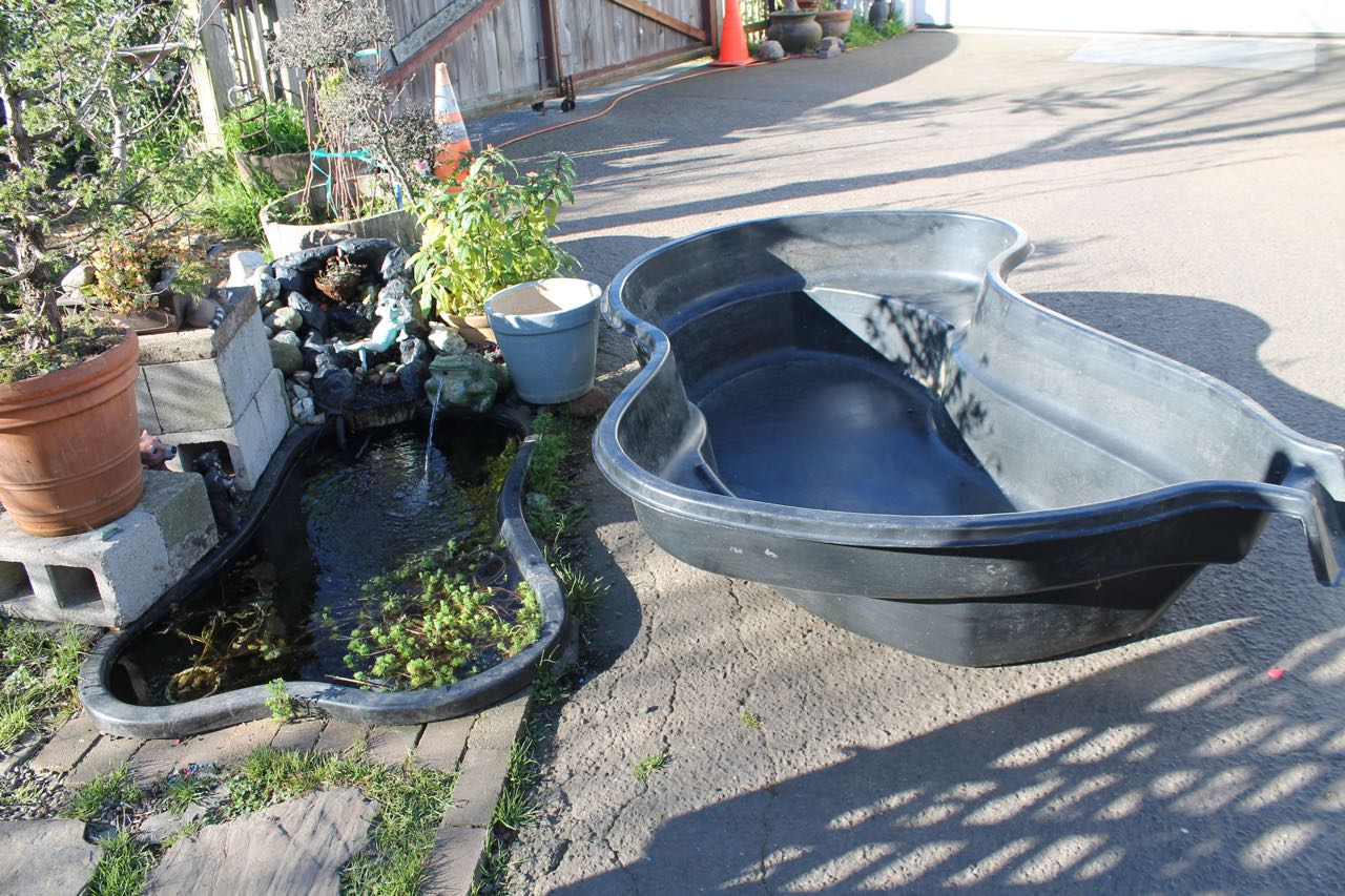 300 gallon pond filter for Koi pond gallons