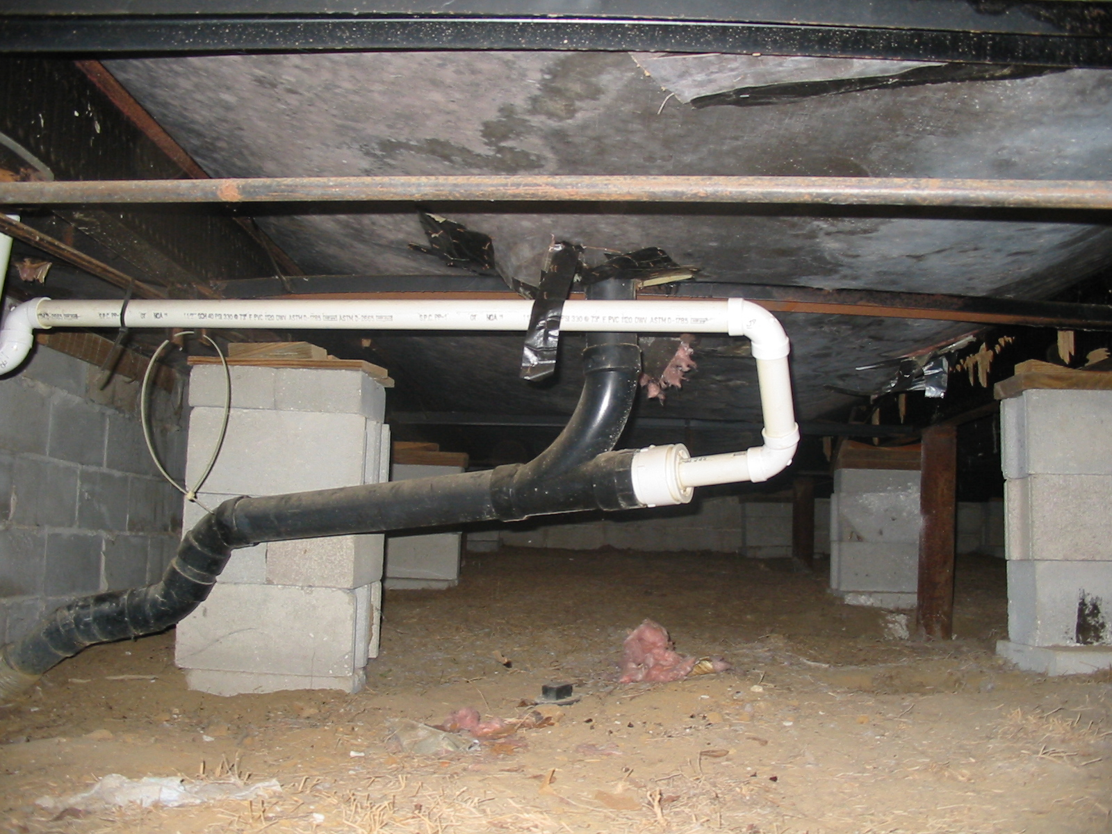 Rat Problem Under Mobile Home Img 2970 Jpg