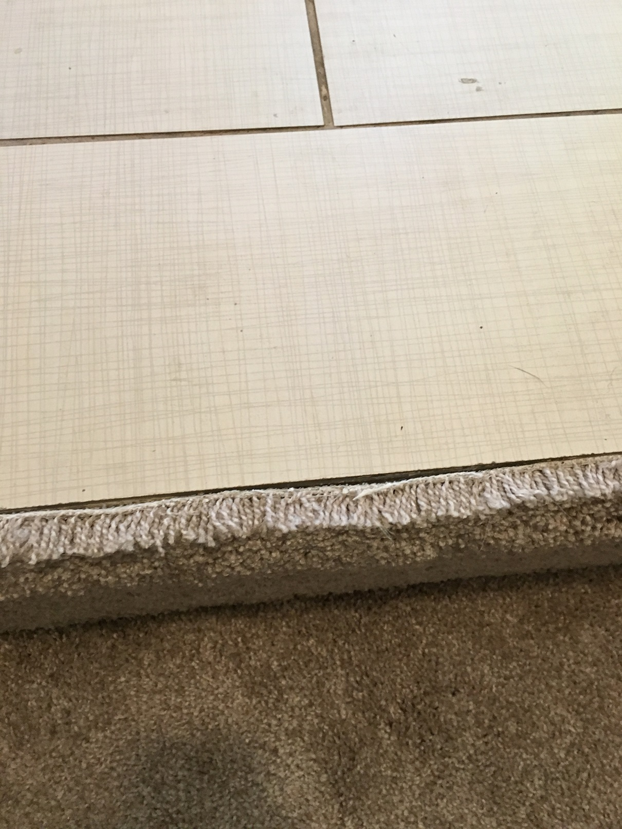 carpet z bar. install carpet z bar strip steam cleaner img 0190g stair edge solutions with tile and how