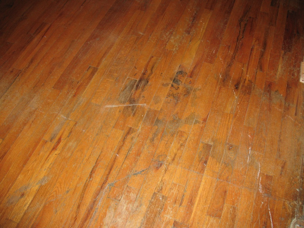 Remove carpet tape residue from hardwood floor thefloors co for Removing hardwood floors