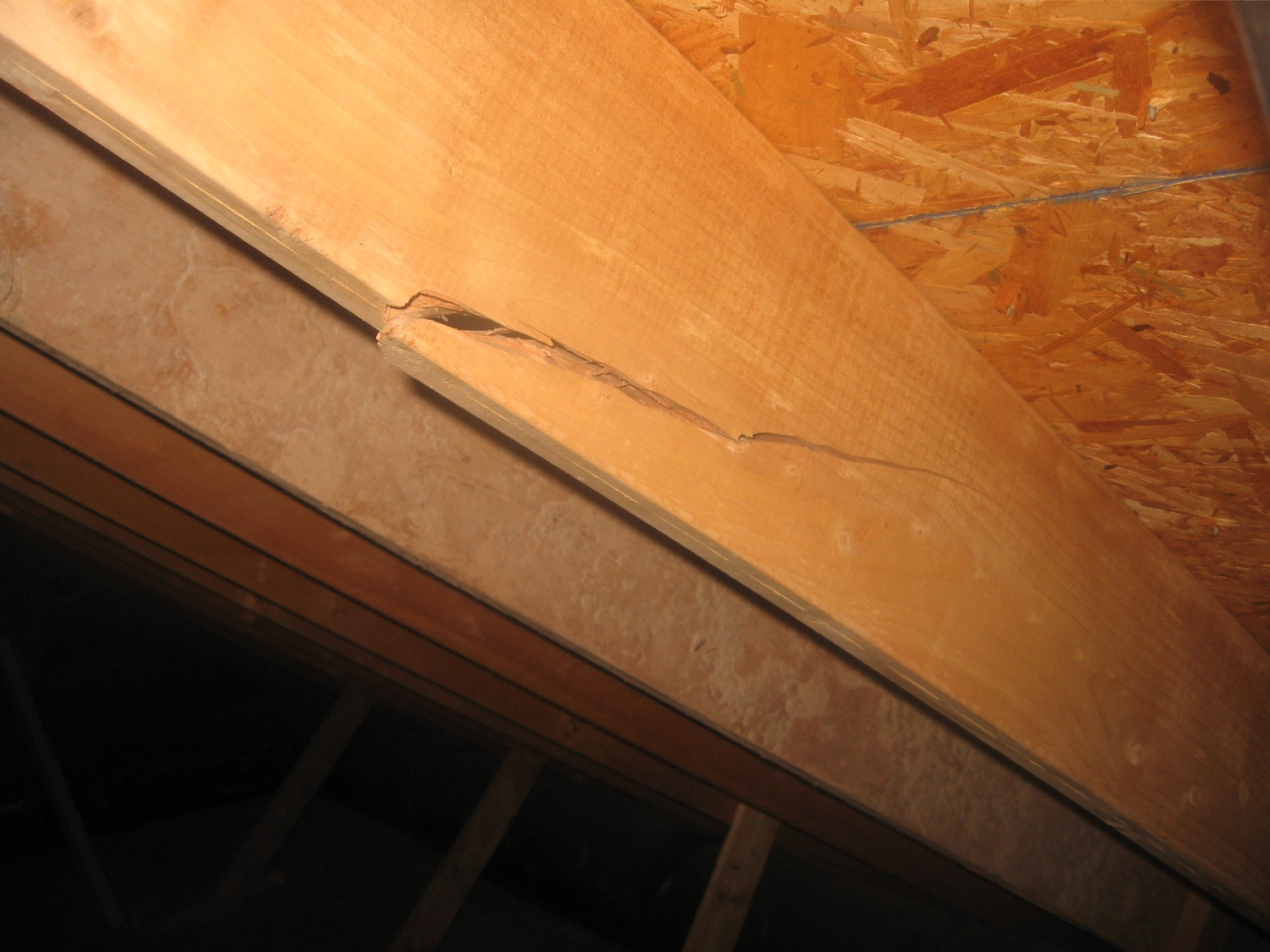 Img 2515 Jpg Roof Rafter Ed How Bad 2517