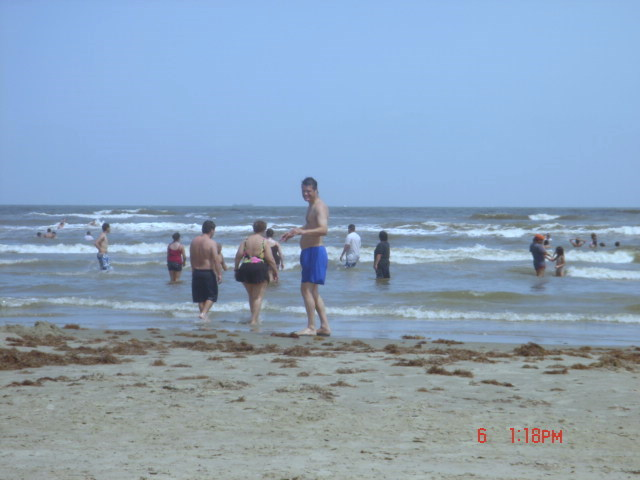 Galveston Beach Pictures Dsc01346 Jpg